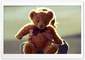 Teddy Bear HD Wide Wallpaper for 4K UHD Widescreen desktop & smartphone
