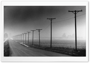 Telegraph Poles Near Road HD Wide Wallpaper for Widescreen