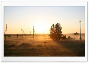 Telephone Pole In Mist HD Wide Wallpaper for 4K UHD Widescreen desktop & smartphone