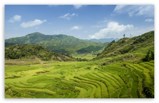 Terraced fields in SaPa ❤ 4K UHD Wallpaper for Wide 16:10 5:3 Widescreen WHXGA WQXGA WUXGA WXGA WGA ; 4K UHD 16:9 Ultra High Definition 2160p 1440p 1080p 900p 720p ; UHD 16:9 2160p 1440p 1080p 900p 720p ; Standard 4:3 5:4 3:2 Fullscreen UXGA XGA SVGA QSXGA SXGA DVGA HVGA HQVGA ( Apple PowerBook G4 iPhone 4 3G 3GS iPod Touch ) ; Smartphone 5:3 WGA ; Tablet 1:1 ; iPad 1/2/Mini ; Mobile 4:3 5:3 3:2 16:9 5:4 - UXGA XGA SVGA WGA DVGA HVGA HQVGA ( Apple PowerBook G4 iPhone 4 3G 3GS iPod Touch ) 2160p 1440p 1080p 900p 720p QSXGA SXGA ; Dual 16:10 5:3 16:9 4:3 5:4 WHXGA WQXGA WUXGA WXGA WGA 2160p 1440p 1080p 900p 720p UXGA XGA SVGA QSXGA SXGA ;