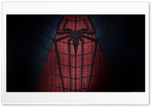 The Amazing Spider-Man 2 2014 HD Wide Wallpaper for Widescreen