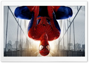 The Amazing Spider Man 2...