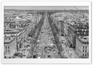 The Avenue des Champs Elysees Black and White Ultra HD Wallpaper for 4K UHD Widescreen desktop, tablet & smartphone