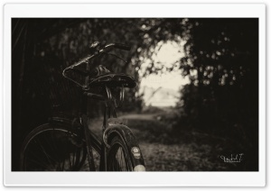 The Bicycle HD Wide Wallpaper for Widescreen