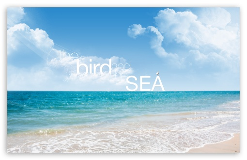 The Bird and The Sea HD wallpaper for Wide 16:10 5:3 Widescreen WHXGA WQXGA WUXGA WXGA WGA ; HD 16:9 High Definition WQHD QWXGA 1080p 900p 720p QHD nHD ; UHD 16:9 WQHD QWXGA 1080p 900p 720p QHD nHD ; Standard 4:3 5:4 3:2 Fullscreen UXGA XGA SVGA QSXGA SXGA DVGA HVGA HQVGA devices ( Apple PowerBook G4 iPhone 4 3G 3GS iPod Touch ) ; Tablet 1:1 ; iPad 1/2/Mini ; Mobile 4:3 5:3 3:2 16:9 5:4 - UXGA XGA SVGA WGA DVGA HVGA HQVGA devices ( Apple PowerBook G4 iPhone 4 3G 3GS iPod Touch ) WQHD QWXGA 1080p 900p 720p QHD nHD QSXGA SXGA ; Dual 16:10 5:3 16:9 4:3 5:4 WHXGA WQXGA WUXGA WXGA WGA WQHD QWXGA 1080p 900p 720p QHD nHD UXGA XGA SVGA QSXGA SXGA ;