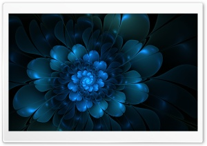 The Blue Flower HD Wide Wallpaper for Widescreen