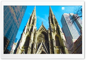 The Cathedral of St Patrick, New York City HD Wide Wallpaper for 4K UHD Widescreen desktop & smartphone