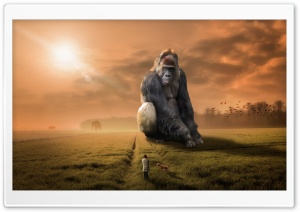 The Giant Gorilla HD Wide Wallpaper for 4K UHD Widescreen desktop & smartphone