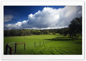 The Green Hills HD Wide Wallpaper for 4K UHD Widescreen desktop & smartphone