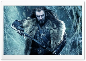 THE HOBBIT THE DESOLATION OF SMAUG Thorin Oakenshield HD Wide Wallpaper for 4K UHD Widescreen desktop & smartphone