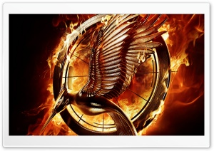 The Hunger Games Catching Fire 2013 HD Wide Wallpaper for Widescreen