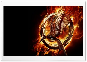 The Hunger Games Catching Fire Movie Ultra HD Wallpaper for 4K UHD Widescreen desktop, tablet & smartphone