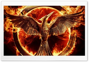 The Hunger Games Mockingjay Part 1 HD Wide Wallpaper for 4K UHD Widescreen desktop & smartphone