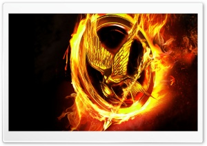The Hunger Games Movie HD Wide Wallpaper for Widescreen