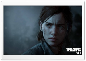 The Last of Us Part II Video Game Ellie 2020 Ultra HD Wallpaper for 4K UHD Widescreen desktop, tablet & smartphone