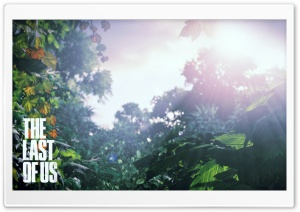 The Last Of Us Scenery HD Wide Wallpaper for Widescreen