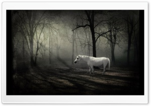 The Last Unicorn HD Wide Wallpaper for Widescreen