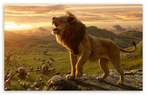 Download The Lion King 2019 UltraHD Wallpaper