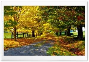 The Most Beautiful Autumn HD Wide Wallpaper for Widescreen