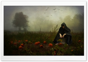 The Pumpkin Whisperer HD Wide Wallpaper for Widescreen