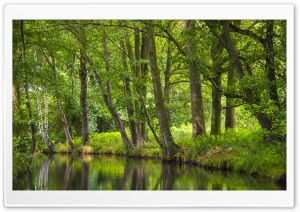 The Spreewald Tranquility HD Wide Wallpaper for 4K UHD Widescreen desktop & smartphone