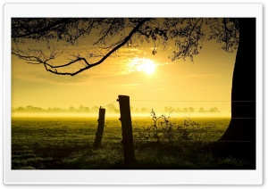 the Sunset HD Wide Wallpaper for Widescreen