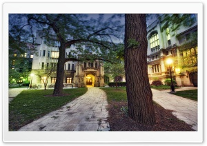 The University Of Chicago HD Wide Wallpaper for Widescreen