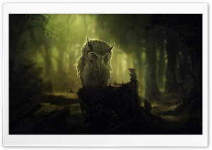 The Wise Owl HD Wide Wallpaper for 4K UHD Widescreen desktop & smartphone