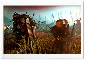 The Witcher 2 Assassins of Kings HD Wide Wallpaper for Widescreen