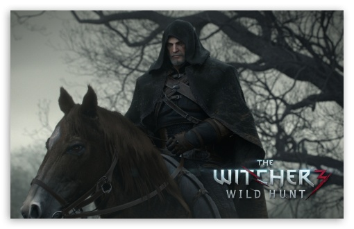The Witcher 3 Wild Hunt HD wallpaper for Wide 16:10 5:3 Widescreen WHXGA WQXGA WUXGA WXGA WGA ; HD 16:9 High Definition WQHD QWXGA 1080p 900p 720p QHD nHD ; Standard 3:2 Fullscreen DVGA HVGA HQVGA devices ( Apple PowerBook G4 iPhone 4 3G 3GS iPod Touch ) ; Mobile 5:3 3:2 16:9 - WGA DVGA HVGA HQVGA devices ( Apple PowerBook G4 iPhone 4 3G 3GS iPod Touch ) WQHD QWXGA 1080p 900p 720p QHD nHD ;