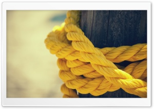 The Yellow Rope HD Wide Wallpaper for 4K UHD Widescreen desktop & smartphone