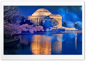 Thomas Jefferson Memorial Cherry Blossom HD Wide Wallpaper for 4K UHD Widescreen desktop & smartphone