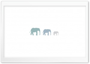 Three Elephants HD Wide Wallpaper for Widescreen