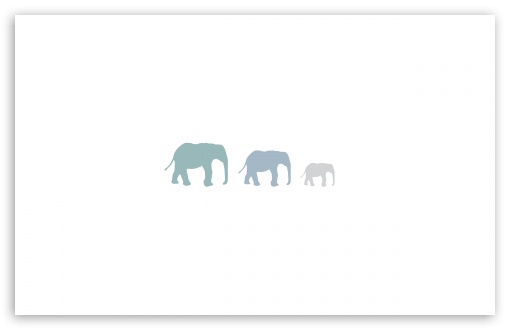Three Elephants HD wallpaper for Wide 16:10 5:3 Widescreen WHXGA WQXGA WUXGA WXGA WGA ; HD 16:9 High Definition WQHD QWXGA 1080p 900p 720p QHD nHD ; Standard 4:3 5:4 3:2 Fullscreen UXGA XGA SVGA QSXGA SXGA DVGA HVGA HQVGA devices ( Apple PowerBook G4 iPhone 4 3G 3GS iPod Touch ) ; Tablet 1:1 ; iPad 1/2/Mini ; Mobile 4:3 5:3 3:2 16:9 5:4 - UXGA XGA SVGA WGA DVGA HVGA HQVGA devices ( Apple PowerBook G4 iPhone 4 3G 3GS iPod Touch ) WQHD QWXGA 1080p 900p 720p QHD nHD QSXGA SXGA ; Dual 16:10 5:3 16:9 4:3 5:4 WHXGA WQXGA WUXGA WXGA WGA WQHD QWXGA 1080p 900p 720p QHD nHD UXGA XGA SVGA QSXGA SXGA ;