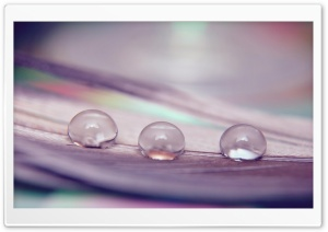 Three Water Drops HD Wide Wallpaper for Widescreen