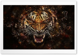 Tiger Backgrounds HD Wide Wallpaper for Widescreen