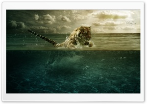 Tiger Leap In The Water HD Wide Wallpaper for 4K UHD Widescreen desktop & smartphone