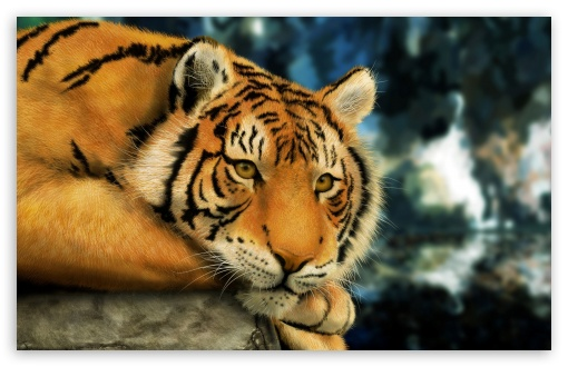Tiger Painting ❤ 4K UHD Wallpaper for Wide 16:10 5:3 Widescreen WHXGA WQXGA WUXGA WXGA WGA ; 4K UHD 16:9 Ultra High Definition 2160p 1440p 1080p 900p 720p ; Standard 4:3 5:4 3:2 Fullscreen UXGA XGA SVGA QSXGA SXGA DVGA HVGA HQVGA ( Apple PowerBook G4 iPhone 4 3G 3GS iPod Touch ) ; Tablet 1:1 ; iPad 1/2/Mini ; Mobile 4:3 5:3 3:2 16:9 5:4 - UXGA XGA SVGA WGA DVGA HVGA HQVGA ( Apple PowerBook G4 iPhone 4 3G 3GS iPod Touch ) 2160p 1440p 1080p 900p 720p QSXGA SXGA ;