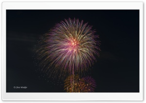 Tokyo Fireworks HD Wide Wallpaper for Widescreen