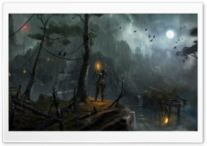 Tomb Raider 2013 Night Concept Art HD Wide Wallpaper for Widescreen
