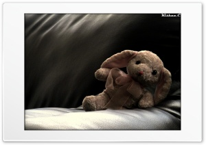 Toy. HD Wide Wallpaper for Widescreen