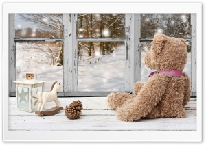 Toy Bear Beside Window HD Wide Wallpaper for 4K UHD Widescreen desktop & smartphone