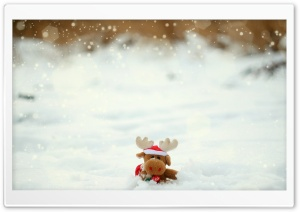 Toy Moose HD Wide Wallpaper for Widescreen