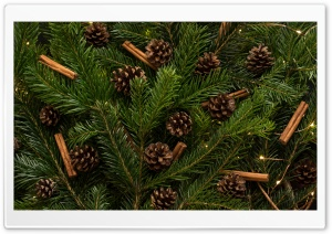 Traditional Christmas Tree Ornaments HD Wide Wallpaper for 4K UHD Widescreen desktop & smartphone