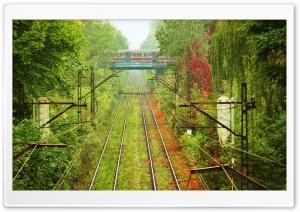 Train Passing By Ultra HD Wallpaper for 4K UHD Widescreen desktop, tablet & smartphone