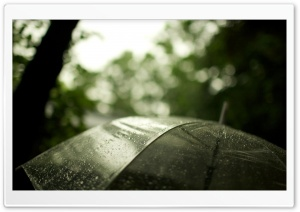 Transparent Umbrella HD Wide Wallpaper for Widescreen