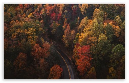 Travel, Road, Forest, Autumn UltraHD Wallpaper for Wide 16:10 5:3 Widescreen WHXGA WQXGA WUXGA WXGA WGA ; UltraWide 21:9 24:10 ; 8K UHD TV 16:9 Ultra High Definition 2160p 1440p 1080p 900p 720p ; UHD 16:9 2160p 1440p 1080p 900p 720p ; Standard 4:3 5:4 3:2 Fullscreen UXGA XGA SVGA QSXGA SXGA DVGA HVGA HQVGA ( Apple PowerBook G4 iPhone 4 3G 3GS iPod Touch ) ; Smartphone 16:9 3:2 5:3 2160p 1440p 1080p 900p 720p DVGA HVGA HQVGA ( Apple PowerBook G4 iPhone 4 3G 3GS iPod Touch ) WGA ; Tablet 1:1 ; iPad 1/2/Mini ; Mobile 4:3 5:3 3:2 16:9 5:4 - UXGA XGA SVGA WGA DVGA HVGA HQVGA ( Apple PowerBook G4 iPhone 4 3G 3GS iPod Touch ) 2160p 1440p 1080p 900p 720p QSXGA SXGA ;