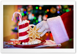 Treats for Santa plate HD Wide Wallpaper for Widescreen