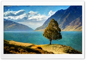 Tree By The Lake HD Wide Wallpaper for Widescreen