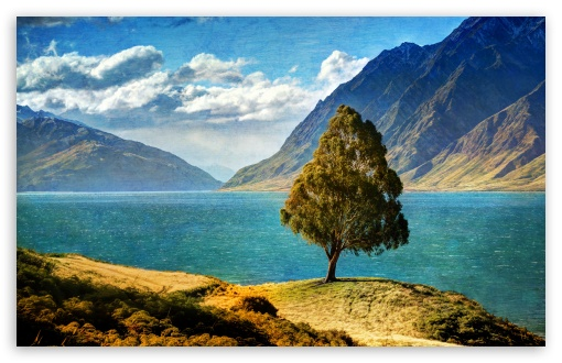 Tree By The Lake ❤ 4K UHD Wallpaper for Wide 16:10 5:3 Widescreen WHXGA WQXGA WUXGA WXGA WGA ; 4K UHD 16:9 Ultra High Definition 2160p 1440p 1080p 900p 720p ; UHD 16:9 2160p 1440p 1080p 900p 720p ; Standard 4:3 5:4 3:2 Fullscreen UXGA XGA SVGA QSXGA SXGA DVGA HVGA HQVGA ( Apple PowerBook G4 iPhone 4 3G 3GS iPod Touch ) ; Tablet 1:1 ; iPad 1/2/Mini ; Mobile 4:3 5:3 3:2 16:9 5:4 - UXGA XGA SVGA WGA DVGA HVGA HQVGA ( Apple PowerBook G4 iPhone 4 3G 3GS iPod Touch ) 2160p 1440p 1080p 900p 720p QSXGA SXGA ; Dual 5:4 QSXGA SXGA ;